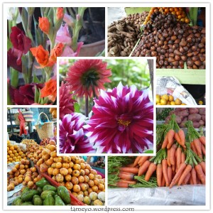 farmer market @ berastagi