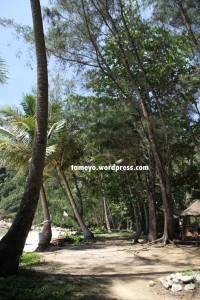 Sibu Rimba Resort